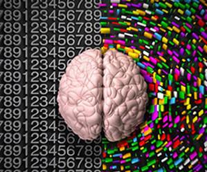 ri-web-design-social-media-training-left-brain-right-brain